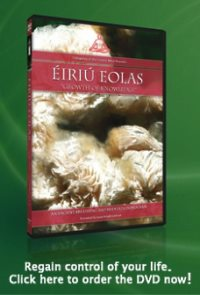 Eiriu Eolas - Heal your life!